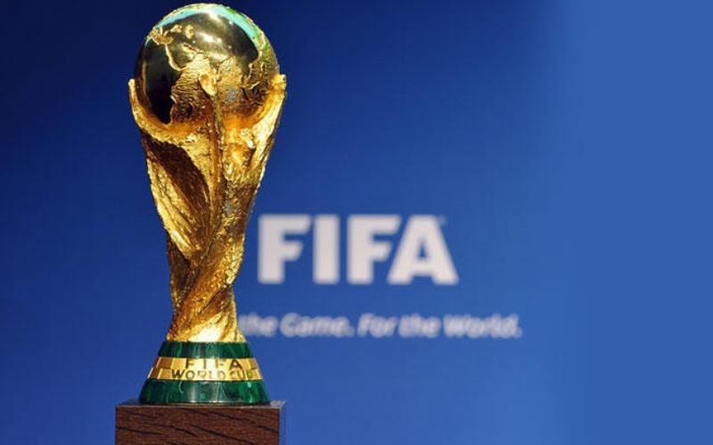 World Cup 2022 được tổ chức ở đâu? Mấy đội tham gia?